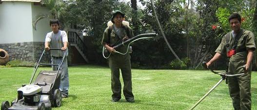 como hacer mantenimiento de jardines