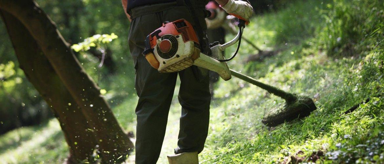 Limpieza de jardines y areas verdes
