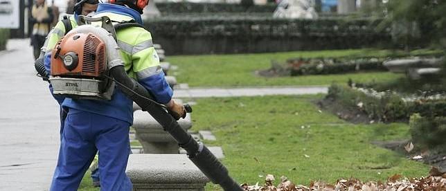mantenimiento y limpieza jardines