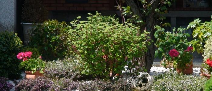 servicios integrales de jardineria