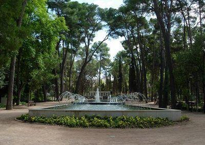 Jardineros a domicilio Madrid